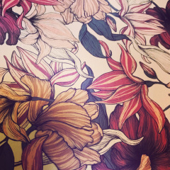 sheerblooms